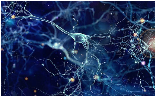 Israeli team uses silicon chip to deliver Alzheimer's-busting protein to brain