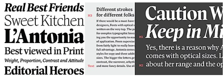 How Many Fonts Are in a Font?