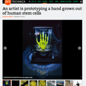 An artist is prototyping a hand grown out of human stem cells