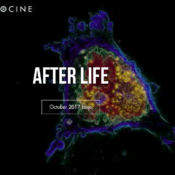 After Life October 2017