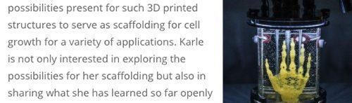 3D Printed Scaffold for Artistic Cell Culture