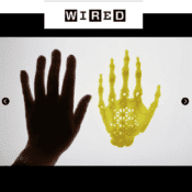 """Bio-artist who brings up """"your hand"""" with 3D printer and stem cells"""