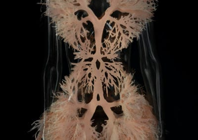2016-Amy-Karle-Internal-Collection-Breathe-Dress-based-on-lungs-08
