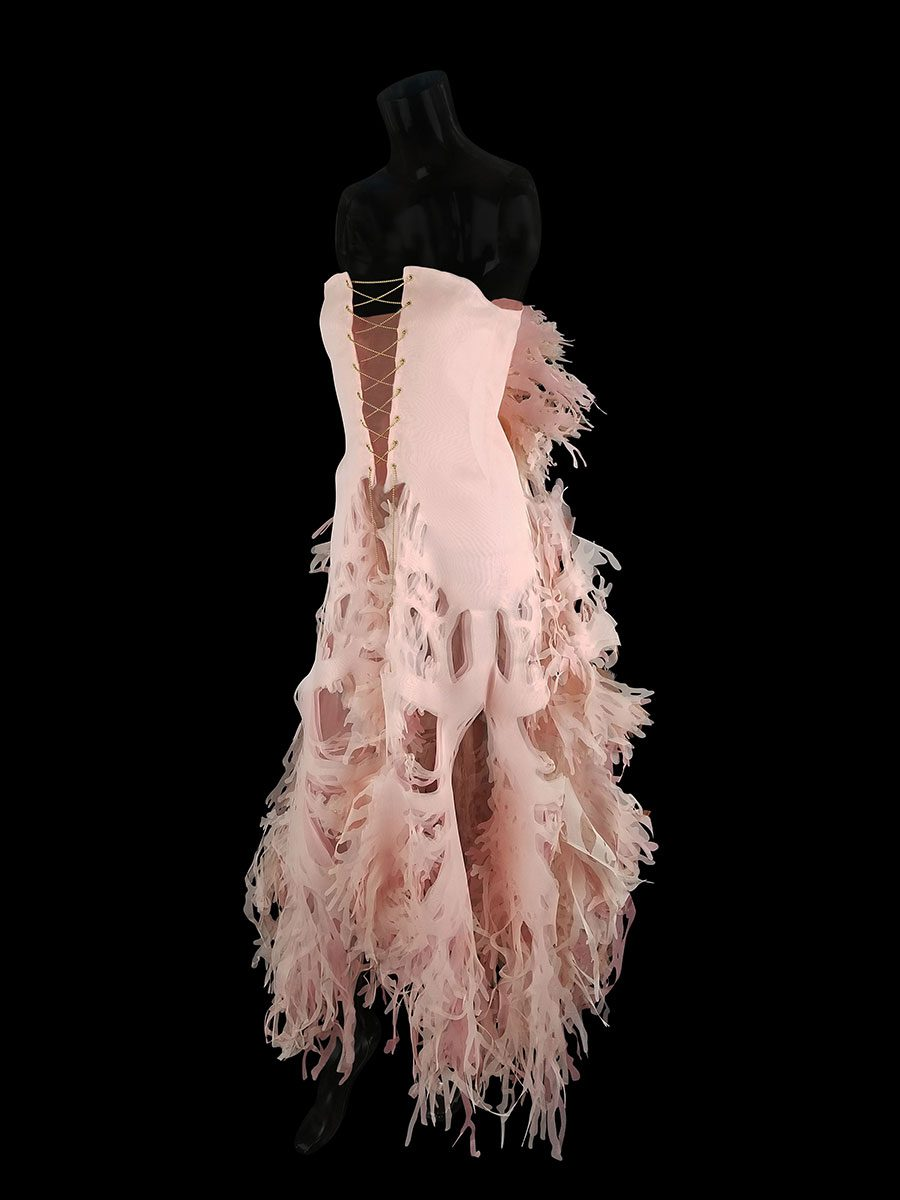 2017-Amy-Karle-Internal-Collection-cardiovascular-gown-06