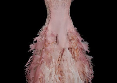 2017-Amy-Karle-Internal-Collection-light-pink-silk-gown-based-on-cardiovascular-system-01