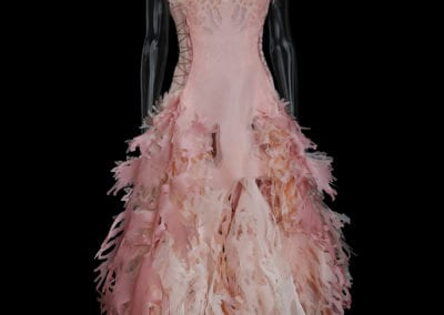 2017-Amy-Karle-Internal-Collection-light-pink-silk-gown-based-on-cardiovascular-system-04