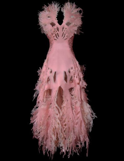 2017-Amy-Karle-Internal-Collection-pink-cardiovascular-gown-02
