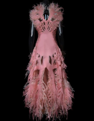 2017-Amy-Karle-Internal-Collection-pink-cardiovascular-gown-04