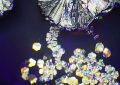 2018-Crystallization-under-Microscope-10-by-Artist-Amy-Karle