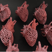 HP | HP Collaborates With Amy Karle, Leading 3D Printing Artist And Futurist