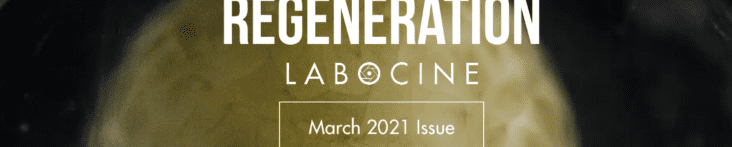 #56 March Issue: Regeneration